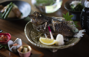 特選「魚」プラン